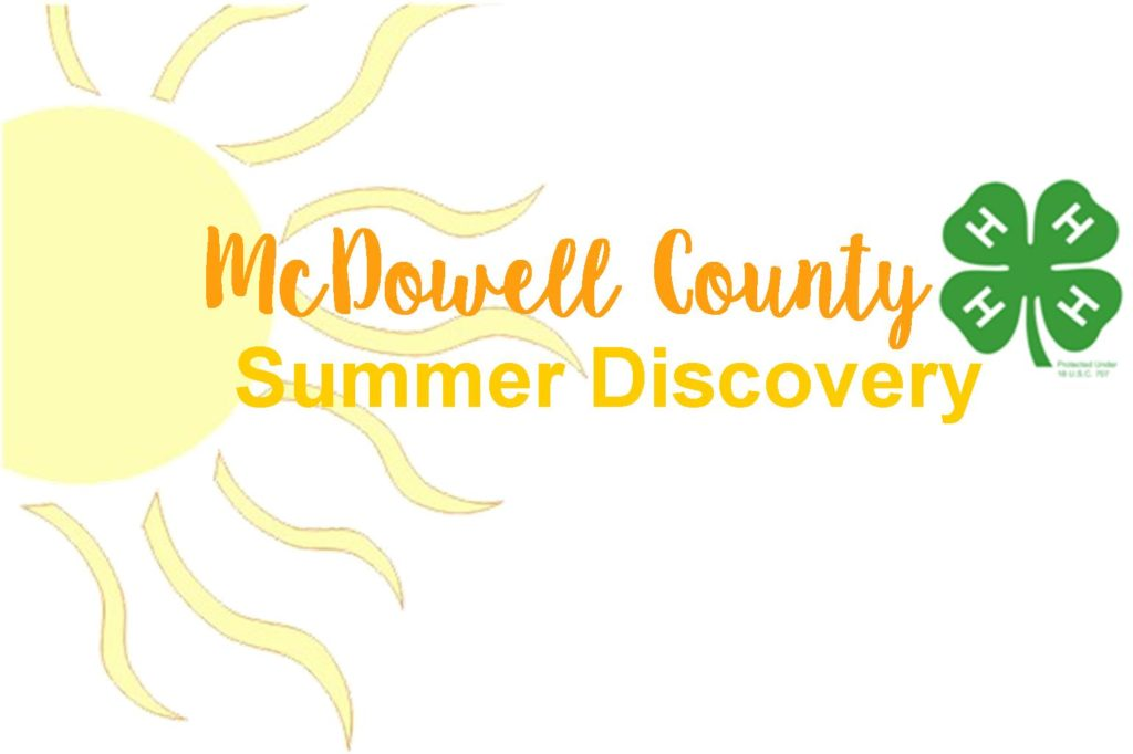 McDowell County 4-H Summer Discovery image