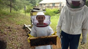 Cover photo for New 4-H Beekeeping Club