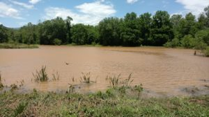 Cover photo for Farm Disaster Assistance Program Open for Applications–Due Dec 20