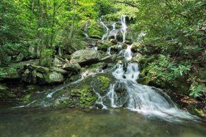 Cover photo for Catawba Falls Hike