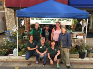 Master Gardeners at Mountain Glory