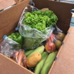 Community Supported Agriculture Produce Box