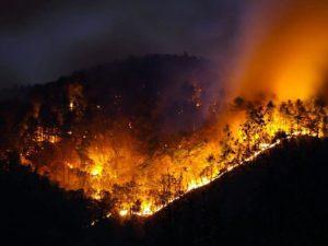 McDowell County wildfire