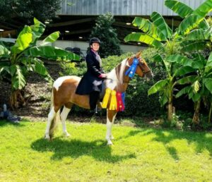 Cover photo for McDowell County 4-H'er Competes at NC 4-H State Horse Show
